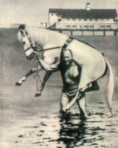 Человек несет коня
