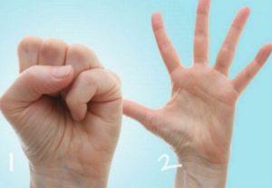 Кулачки